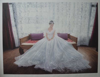 A painting of gown, wedding dress, bride, dress, bridal clothing, photograph, woman, beauty, pink, girl