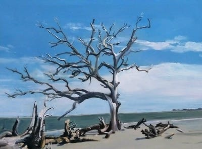 A painting of tree, branch, sky, shore, sea, water, driftwood, plant, wood, coast