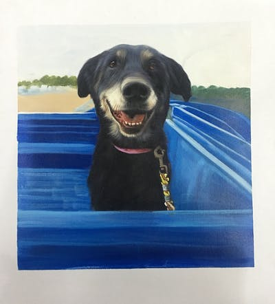 A painting of dog, dog breed, dog like mammal, labrador retriever, snout, borador, retriever, puppy, whiskers, sporting group