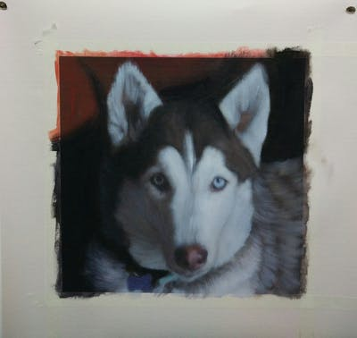 A painting of siberian husky, dog breed, sakhalin husky, dog like mammal, dog, sled dog, dog breed group, native american indian dog, seppala siberian sleddog, east siberian laika