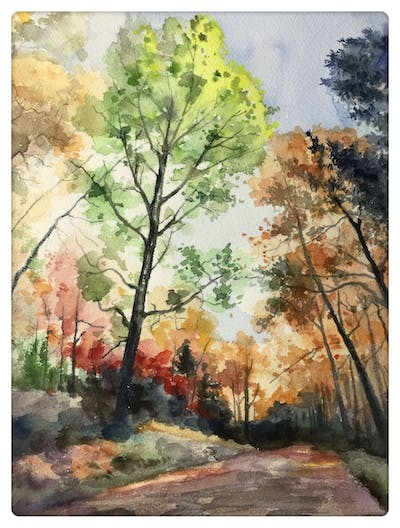 A painting of nature, leaf, autumn, tree, temperate broadleaf and mixed forest, ecosystem, yellow, woody plant, sky, deciduous