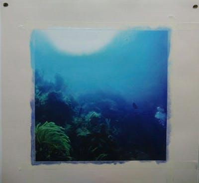 A painting of underwater, coral reef, marine biology, reef, sea, aquanaut, scuba diving, coral, ocean, organism
