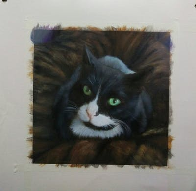 A painting of cat, whiskers, small to medium sized cats, fauna, cat like mammal, domestic short haired cat, snout, european shorthair, fur, domestic long haired cat