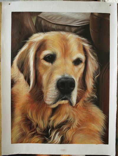 A painting of dog, golden retriever, dog breed, retriever, dog like mammal, snout, dog breed group, whiskers, sporting group, companion dog