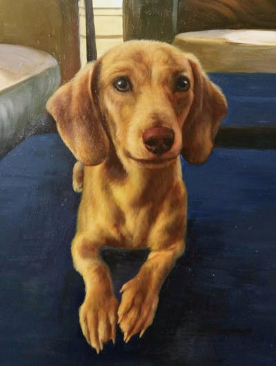A painting of dog, dog breed, dog like mammal, snout, dachshund, carnivoran, puppy, dog crossbreeds, companion dog, hound