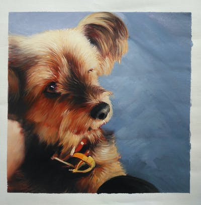 A painting of dog, mammal, dog like mammal, vertebrate, dog breed, snout, yorkshire terrier, terrier, puppy, sky