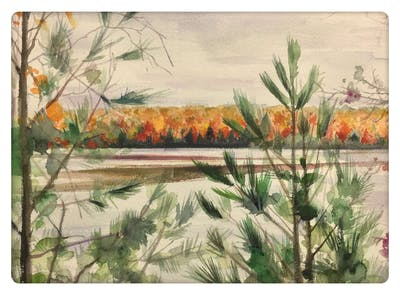 A painting of water, reflection, wetland, spring, tree, sky, plant, lake, winter, flower