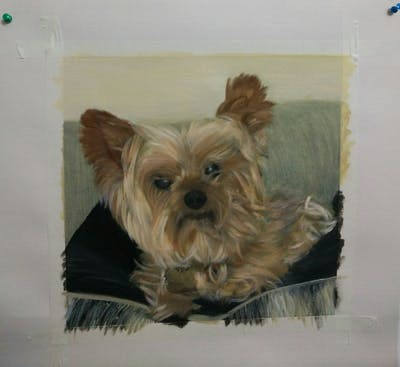 A painting of dog, dog like mammal, dog breed, terrier, yorkshire terrier, morkie, small terrier, dog crossbreeds, carnivoran, snout