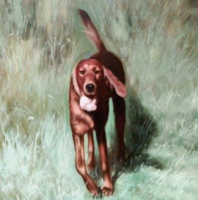 A painting of dog, dog breed, boykin spaniel, irish setter, dog like mammal, hunting dog, setter, german spaniel, carnivoran, sporting group