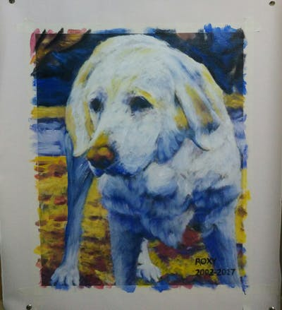 A painting of dog, dog breed, labrador retriever, retriever, golden retriever, dog breed group, dog like mammal, snout, sporting group, companion dog