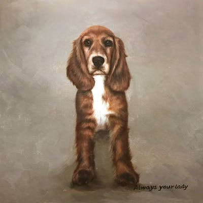 A painting of dog, dog like mammal, dog breed, spaniel, english cocker spaniel, dog breed group, american cocker spaniel, dog crossbreeds, carnivoran, snout