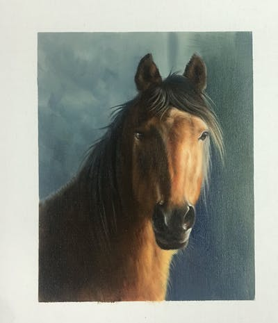 A painting of horse, mane, horse like mammal, mustang horse, fauna, stallion, mare, snout, wildlife, bridle