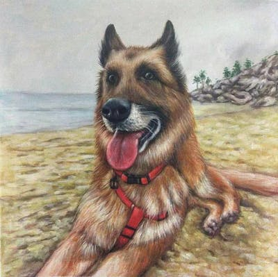 A painting of dog, dog breed, dog breed group, dog like mammal, snout, german shepherd dog
