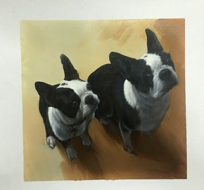A painting of boston terrier, dog like mammal, dog, dog breed, carnivoran, non sporting group, snout, dog breed group