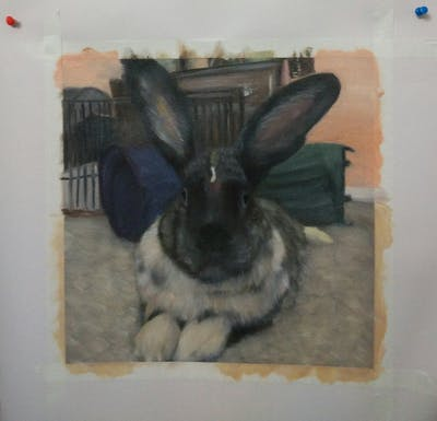 A painting of mammal, rabbit, rabits and hares, domestic rabbit, fur, snout