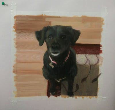 A painting of dog, dog breed, dog like mammal, dog breed group, borador, labrador retriever, snout, puppy, companion dog, sporting group