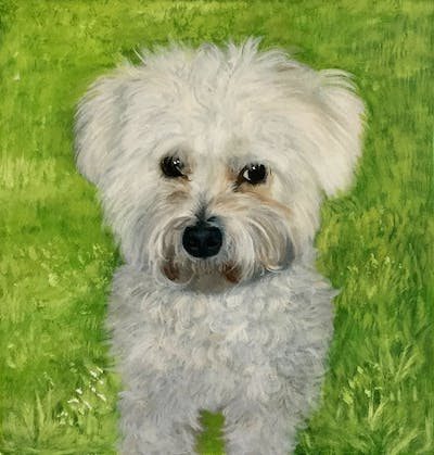 A painting of dog like mammal, dog breed, dog, maltese, bichon frisé, bichon, miniature poodle, poodle crossbreed, dog breed group, bolognese