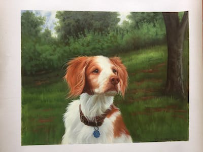 A painting of dog, dog breed, dog like mammal, welsh springer spaniel, brittany, spaniel, drentse patrijshond, snout, kooikerhondje, companion dog