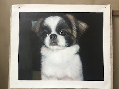 A painting of dog, dog like mammal, dog breed, dog breed group, tibetan spaniel, japanese chin, snout, carnivoran, puppy, companion dog