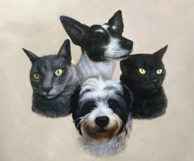 A painting of dog breed, cat, dog, small to medium sized cats, whiskers, dog like mammal, snout, vulnerable native breeds, companion dog, tail