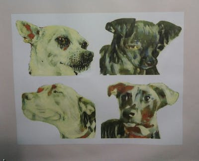 A painting of dog, dog breed, dog like mammal, dog breed group, chihuahua, snout, whiskers, companion dog, carnivoran, toy dog