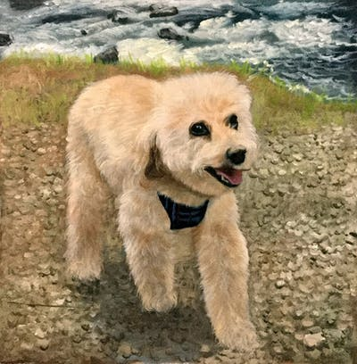 A painting of dog, dog like mammal, dog breed, dog breed group, goldendoodle, miniature poodle, snout, dog crossbreeds, poodle, bichon frisé