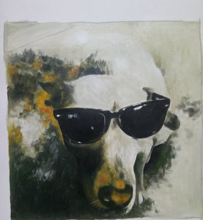 A painting of dog, dog breed, eyewear, nose, snout, dog like mammal, sunglasses, vision care, dog breed group, glasses