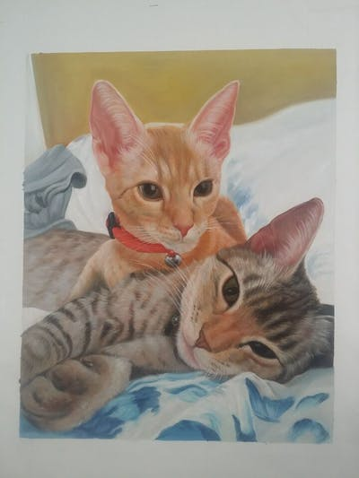 A painting of cat, donskoy, small to medium sized cats, cat like mammal, kitten, peterbald, devon rex, whiskers, ocicat, oriental shorthair