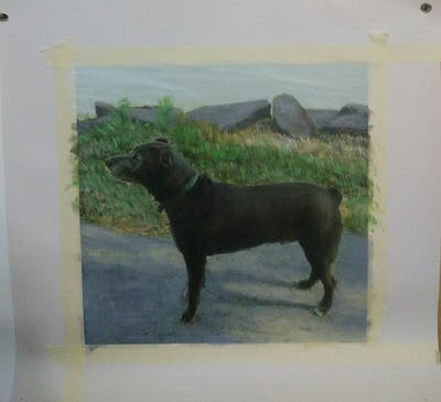 A painting of dog, dog breed, dog like mammal, dog breed group, patterdale terrier, dog crossbreeds, carnivoran, sporting group