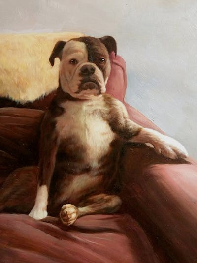 A painting of dog, dog like mammal, dog breed, dog breed group, snout, carnivoran, dog crossbreeds, boxer, olde english bulldogge, old english bulldog