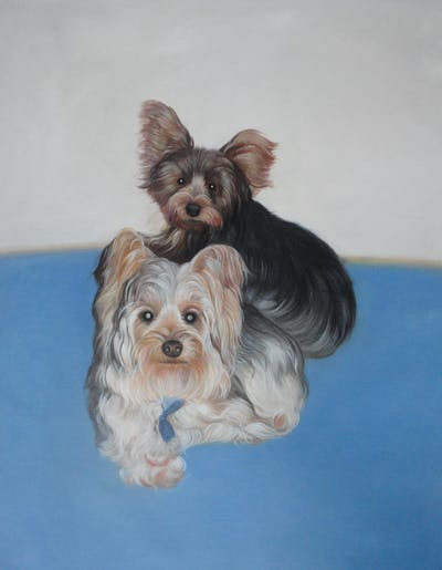 A painting of dog, dog like mammal, dog breed, yorkshire terrier, terrier, australian silky terrier, small terrier, morkie, carnivoran, biewer terrier