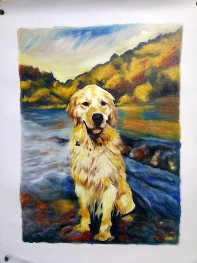 A painting of dog, dog like mammal, golden retriever, mammal, vertebrate, retriever, water, dog breed, snout, dog breed group