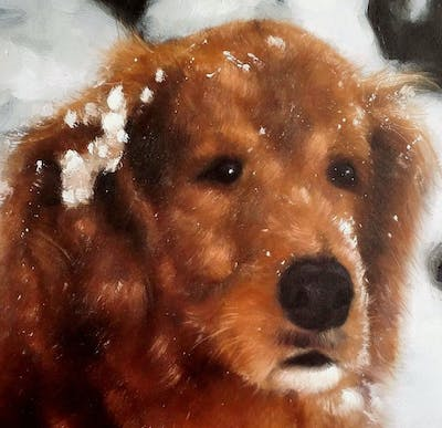 A painting of dog like mammal, dog, dog breed, snout, dog crossbreeds, carnivoran, cockapoo, miniature poodle, goldendoodle, poodle