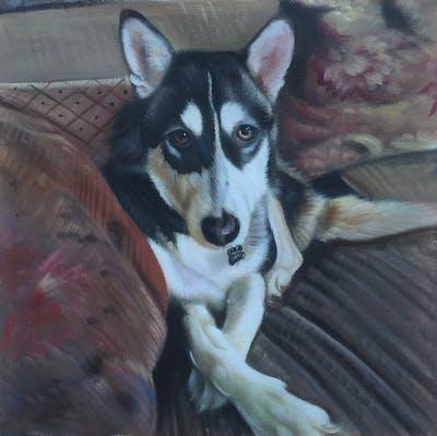 A painting of dog, siberian husky, dog breed, dog like mammal, sakhalin husky, tamaskan dog, sled dog, dog breed group, alaskan malamute, snout