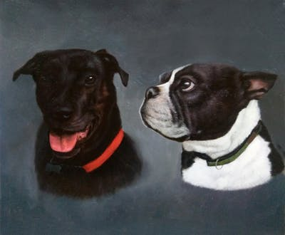 A painting of dog, boston terrier, dog breed, dog like mammal, nose, snout, ear, whiskers, dog breed group, carnivoran