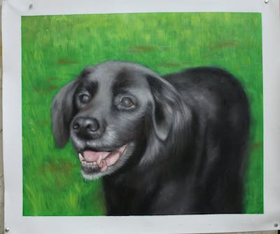 A painting of dog, dog like mammal, dog breed, snout, dog breed group, labrador retriever, whiskers, flat coated retriever, retriever, stabyhoun