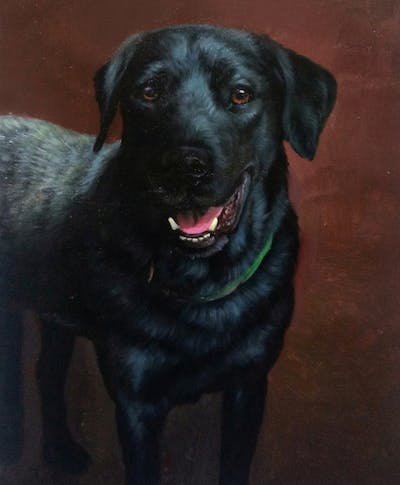 A painting of dog, dog breed, dog like mammal, borador, dog breed group, labrador retriever, snout, patterdale terrier, whiskers, sporting group