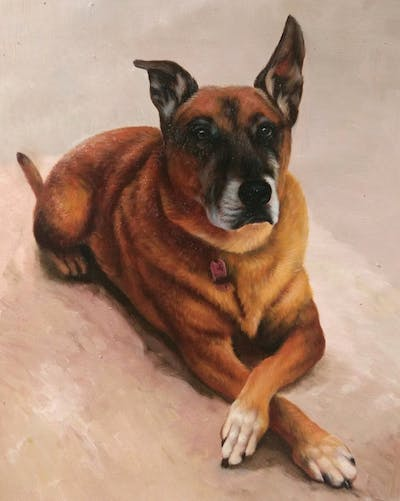 A painting of dog, dog breed, dog breed group, snout, dog like mammal, street dog, dog crossbreeds, black mouth cur, carnivoran