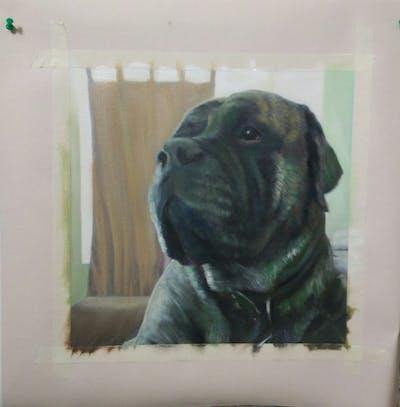 A painting of dog, dog like mammal, dog breed, mammal, bullmastiff, dog breed group, snout, cane corso, carnivoran, perro de presa canario