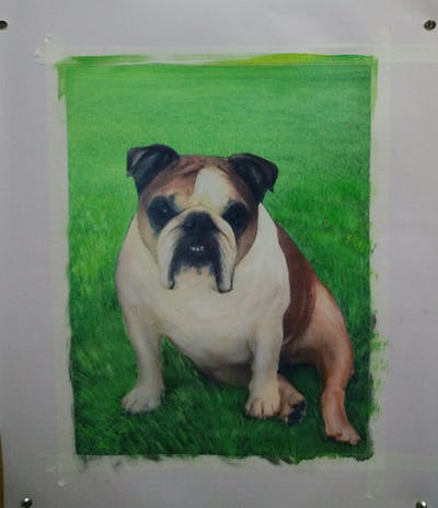 A painting of dog, dog like mammal, bulldog, dog breed, mammal, vertebrate, toy bulldog, old english bulldog, dog breed group, olde english bulldogge