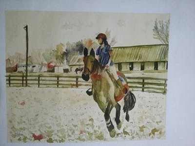 A painting of horse, bridle, hunt seat, rein, equestrianism, english riding, equitation, western riding, animal sports, horse tack