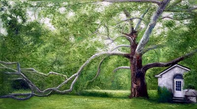 A painting of tree, vegetation, nature reserve, ecosystem, woodland, plant, branch, grass, plantation, biome