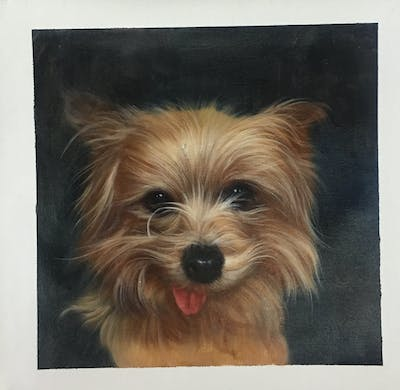 A painting of dog, dog like mammal, dog breed, terrier, australian silky terrier, morkie, australian terrier, yorkshire terrier, snout, biewer terrier