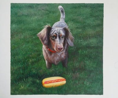 A painting of dog, dog breed, dog like mammal, grass, picardy spaniel, sussex spaniel, hound