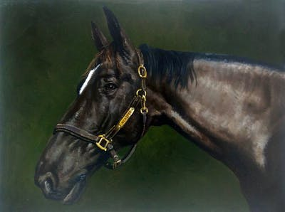 A painting of halter, bridle, horse, horse tack, rein, mane, horse like mammal, mare, stallion, horse harness
