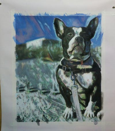 A painting of dog breed, dog, boston terrier, dog like mammal, snout, leash, dog collar, carnivoran, non sporting group