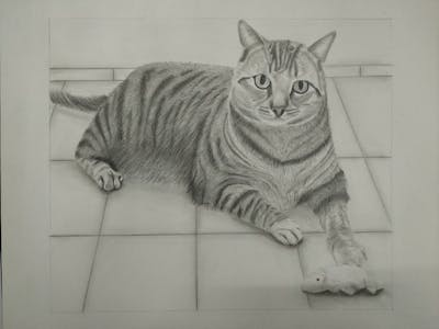 A painting of cat, dragon li, whiskers, mammal, tabby cat, small to medium sized cats, toyger, cat like mammal, european shorthair, domestic short haired cat