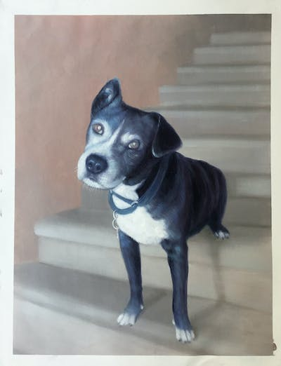 A painting of dog, dog breed, dog like mammal, dog breed group, snout, american pit bull terrier, carnivoran, staffordshire bull terrier, pit bull, american staffordshire terrier