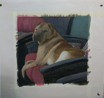A painting of dog, dog like mammal, dog breed, dog breed group, snout, shar pei, carnivoran, broholmer, fawn, non sporting group