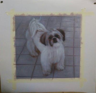 A painting of dog like mammal, dog breed, dog, dog breed group, shih tzu, carnivoran, cavachon, lhasa apso, havanese, dog crossbreeds